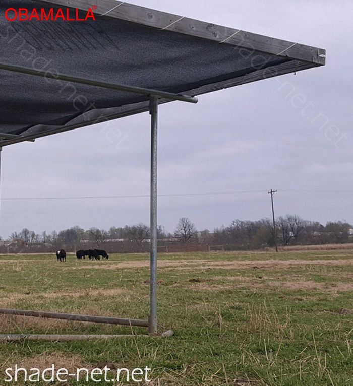 raschel mesh installed on field for protection of the cattle.